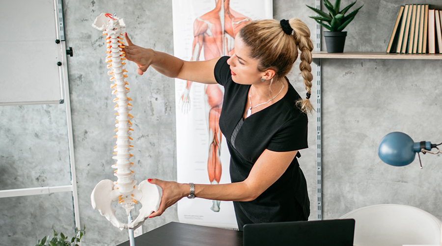 woman studying spine
